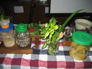Sample herbs, plants and food brought by Harith